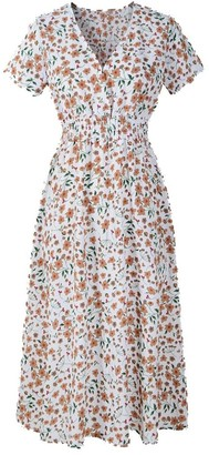 DAYLIN Newest Womens Daily Popular Largr Size V Neck Chiffon Holiday Floral Print Ladies Summer Beach Party Dress (2XL