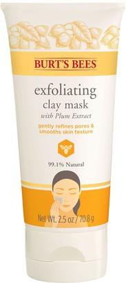 Burt's Bees Exfoliating Clay Mask