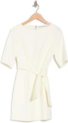 Alice + Olivia Virgil Boatneck Short Sleeve Tie Waist Mini Dress