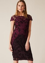 Thumbnail for your product : Phase Eight Aida Tapework Lace Dress