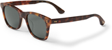 Toms The Hill-Side Fitzpatrick Amber Tortoise Zeiss Polarized