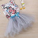 Hot Baby Dress! AMA(TM) Toddler Baby Girls Floral Sleeveless Princess Wedding Party Tutu Dresses Clothes (6/12M, Gray)