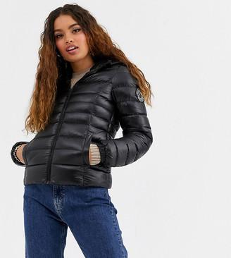 Brave Soul Petite everett padded coat-Black