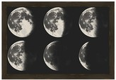 PTM Images Moon Crescent Wall Art
