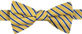 Tommy Hilfiger Men's Small Stripe Pre-Tied Bow Tie
