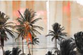 Parvez Taj Bahia Canvas Wall Art