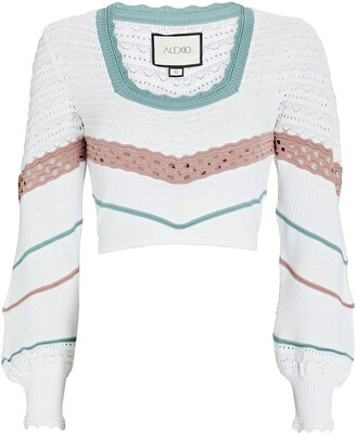 Alexis Ganesa Cropped Pointelle Sweater