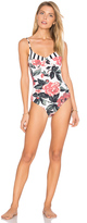 Salinas Kate One Piece