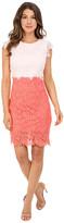 Christin Michaels Parisian Lace Dress