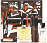 Terre d'Hermès Pure Perfume (40ml)