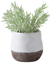 Torre & Tagus Corsica Crackle Round Pot Display