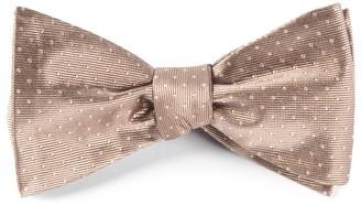 Tie Bar Mini Dots Champagne Bow Tie