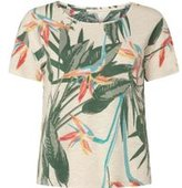 Dorothy Perkins Womens **Only Pink Bird Print Back Knot Top- Pink