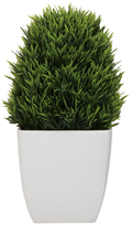 Torre & Tagus Large Potted Grass