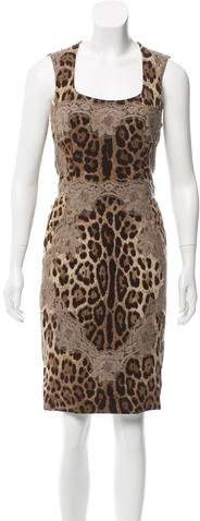 Dolce & Gabbana Lace-Accented Sheath Dress
