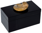 Mapleton Drive Large Lacquered Box with Goniatites Fossil
