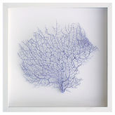 Karen Robertson Exotic Sea Fan, Lavender