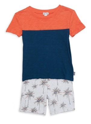 PJ Salvage Little Boy's 2-Piece Colorblock T-Shirt & Palm Tree Shorts Set