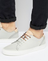 Ted Baker Kiing Trainers