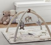 Pottery Barn Kids Animal Friends Classic Activity Gym
