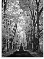 """Country Road Ilona Wellmann """"Country Road"""" Canvas Print"""
