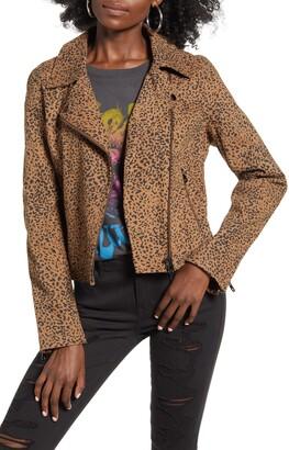 Vigoss Leopard Print Denim Moto Jacket