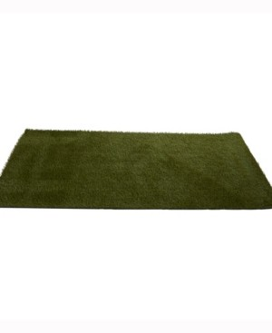 Nearly Natural 4ft. x 8ft. Artificial Professional Grass Turf Carpet Uv Resistant Indoor/Outdoor