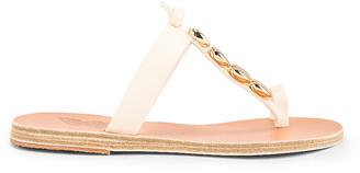 Ancient Greek Sandals Iris Gold Shells Sandals in Off White | FWRD