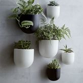 west elm Ceramic Wallscape Planters