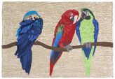 Liora Manné Trans Ocean Imports Frontporch Parrots Indoor Outdoor Rug