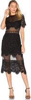 Karina Grimaldi Soho Lace Dress