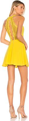 NBD Gimmie More Dress