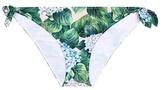 Dolce & Gabbana Printed bikini bottoms