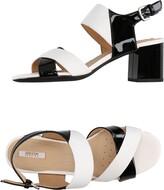Geox Sandals - Item 11252927
