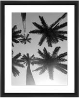 PTM Images Palm Trees in Black & White Framed Giclee - 22 x 18