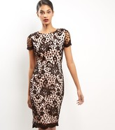 New Look AX Paris Floral Lace Bodycon Midi Dress