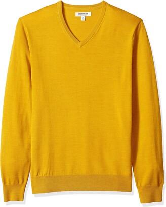 Goodthreads Amazon Brand Men's Lightweight Merino Wool V-Neck Sweater