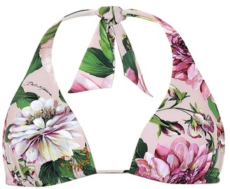 Dolce & Gabbana Floral triangle bikini top