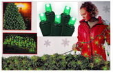 Asstd National Brand 4' X 6' Green Wide Angle LED Net Style Christmas Lights with Green Wire
