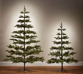 Pottery Barn Lit Faux Pine Trees
