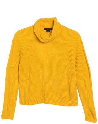 Sanctuary Shaker Ribbed Knit Turtleneck Sweater (Petite)
