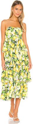 Show Me Your Mumu Savannah Ruffle Dress