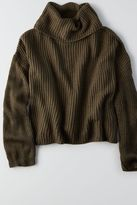 American Eagle Outfitters Don't Ask Why Turtleneck Sweater