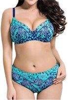 DaiLiWei Womens Plus Size Padded Bikini Sets Bathing Suit Swimsuit Swimwear Sets 2pcs