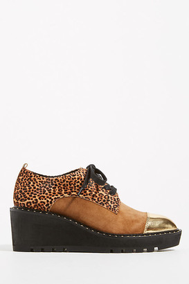 Cecelia New York Gia Platform Oxfords By in Assorted Size 7.5