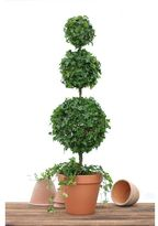 Pottery Barn Live Ivy Triple Ball Topiary