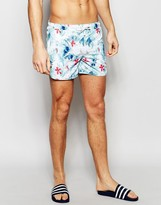Supremacy Tropic Runner Swim Shorts