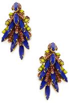 Elizabeth Cole Billie Statement Earrings