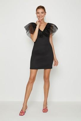 Coast Organza Shoulder Ruffle Dress