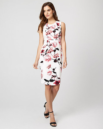 Le Château Floral Print Knit Crepe Sheath Dress